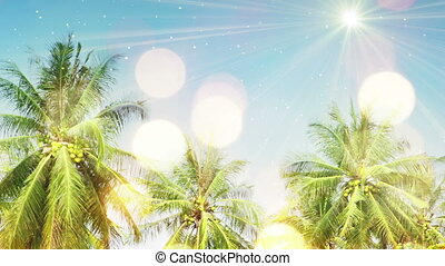 palm trees and sunlight seamless loop