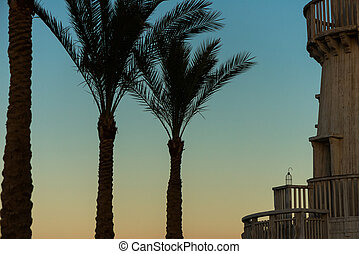 palm trees and vintage wooden lighthouse