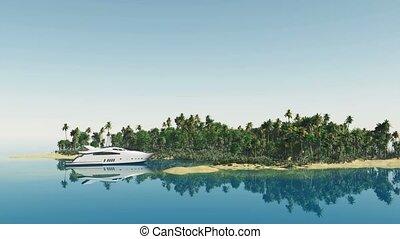 palm trees at laguna island