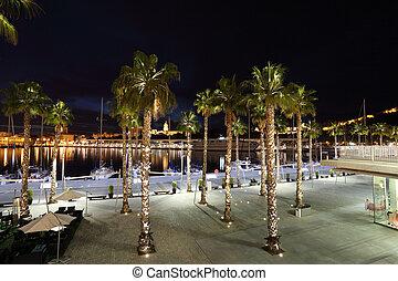 Palm Trees at the promenade of Malaga, Andalusia Spain