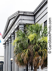 Palm Trees by Custom House