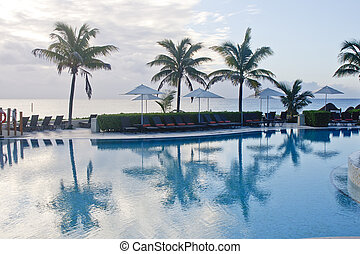 Palm Trees by Pool at Dawn