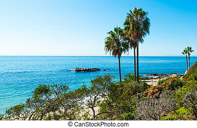 Palm trees by the sea in Laguna Beach shore on a sunny day