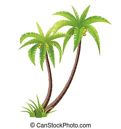 Palm trees - Coconut palm trees isolated on white, vector...