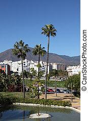 Palm trees in Estepona, Costa del Sol, Andalusia, Spain