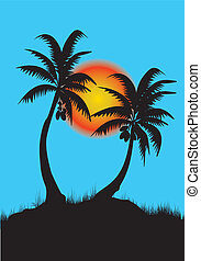 palm trees in sunset and blue background