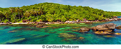 Palm trees island sea