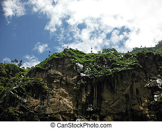 Palm Trees on a Himalayan Cliff