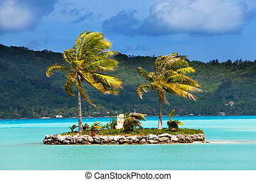 Palm trees on island in the sea and mountains on a background
