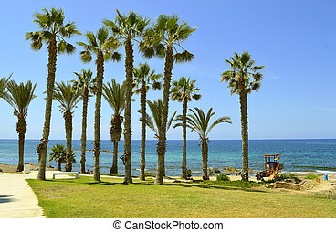Paphos beach in Cyprus