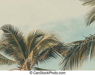 Palm trees on the beautiful sunset background. Coconut trees against blue sky. Palm trees at tropical coast, vintage toned and stylized. Copy space
