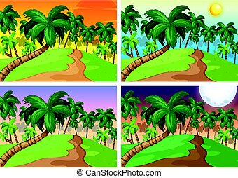 Palm trees on the hills at four different times