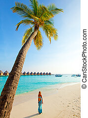 Palm trees on tropical island at ocean. Maldives.