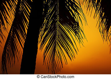 Palm trees over orange sunset background