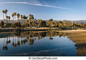 Palm trees reflecting in Mission Creek, in Santa Barbara, Califo