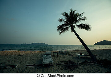 Palm trees silhouettes on a tropical beach in the amazing twilight.