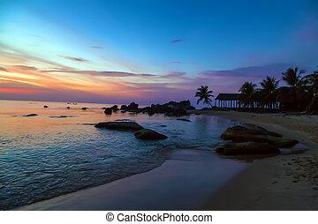 Palm Trees silhouettes Sunrise Tropical landscape sea