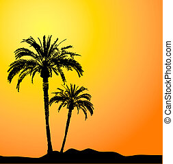 Palm trees silhouetted against a sunset sky