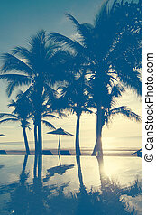 Palm trees vintage - Palm trees on the beautiful sunset...