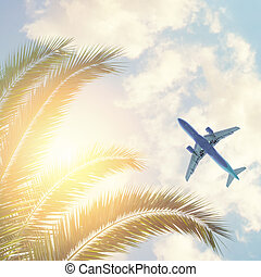 Palm trees with plane and sky clouds background
