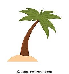 palm tropical tree
