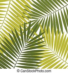 palm, vector, blad, achtergrond, illustratie