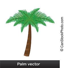 palm vector