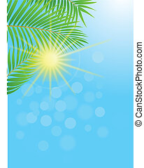 palm vel, achtergrond