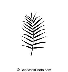 palm, vrijstaand, exotische , blad, vector, illustration., silhouette.