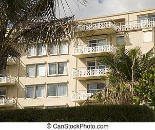 palm, west, rijhuis, strand