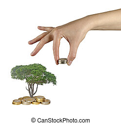 Palm with a tree growng from pile of coins