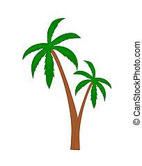 palma, árboles.