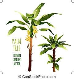 palma, árboles., vector, ilustración