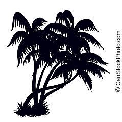 palma, 2, silueta, árboles