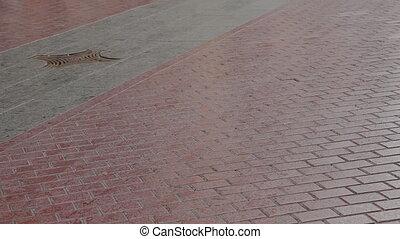 Palma de Mallorca, Lattice on a street drain.