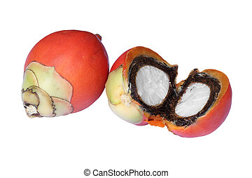 Palma,  foxtail