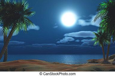 palma, isla, árbol, noche