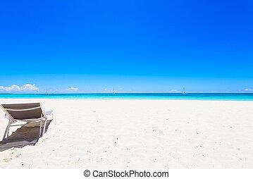 palma, longue, praia, chaise
