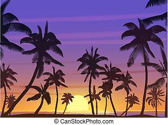 palma, noce di cocco, albero, silhouette, a, tramonto, o, sunrise., realistico, vettore, illustration., terra, paradiso, su, il, spiaggia.