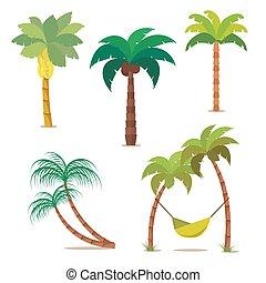 palma, set., tropical, árboles, para, su, diseño, o, project., aislado, blanco, fondo., vector, ilustración, eps10.