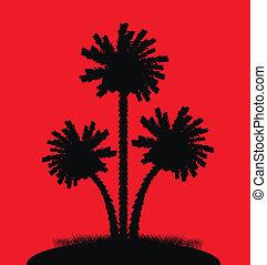 palma, silueta, fundo, árvores, vermelho