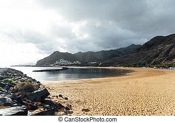palma, sol, vista, dorado, nublado, árboles, arena, altura,...