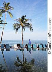 palma, tailandês, praia, árvore, gulf.
