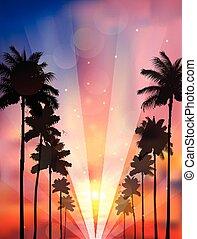 palma, tramonto, albero