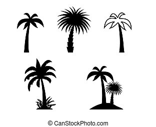palma, vetorial, silueta, illustration., árvores.