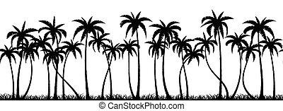 palmas, bosque, silueta