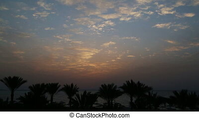 palmas, e, amanhecer, sobre, mar, -, timelapse