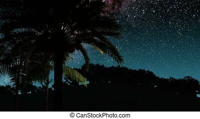 palmas, e, meio leitoso, estrelas, em, night., elementos, de, este, imagem, fornecido, por, nasa