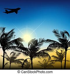 palmbomen, tegen, de, hemel