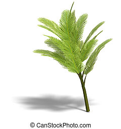 Palmbush - young and small palmtree. 3D render with clipping...